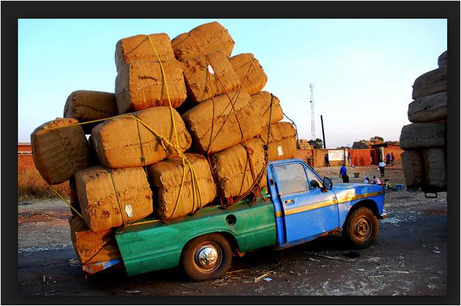 A photo of Sam H.'s Datsun overloaded with bushels of coffee from the Port of San Diego.