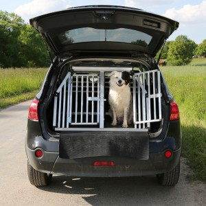 becoming a pet transporter has never been easier
