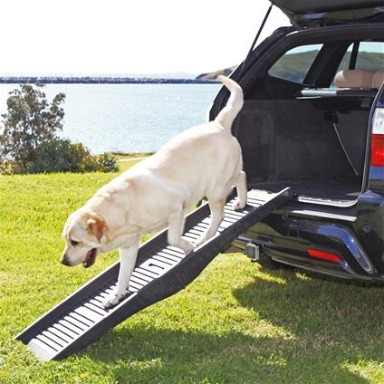 dog vehicle ramp