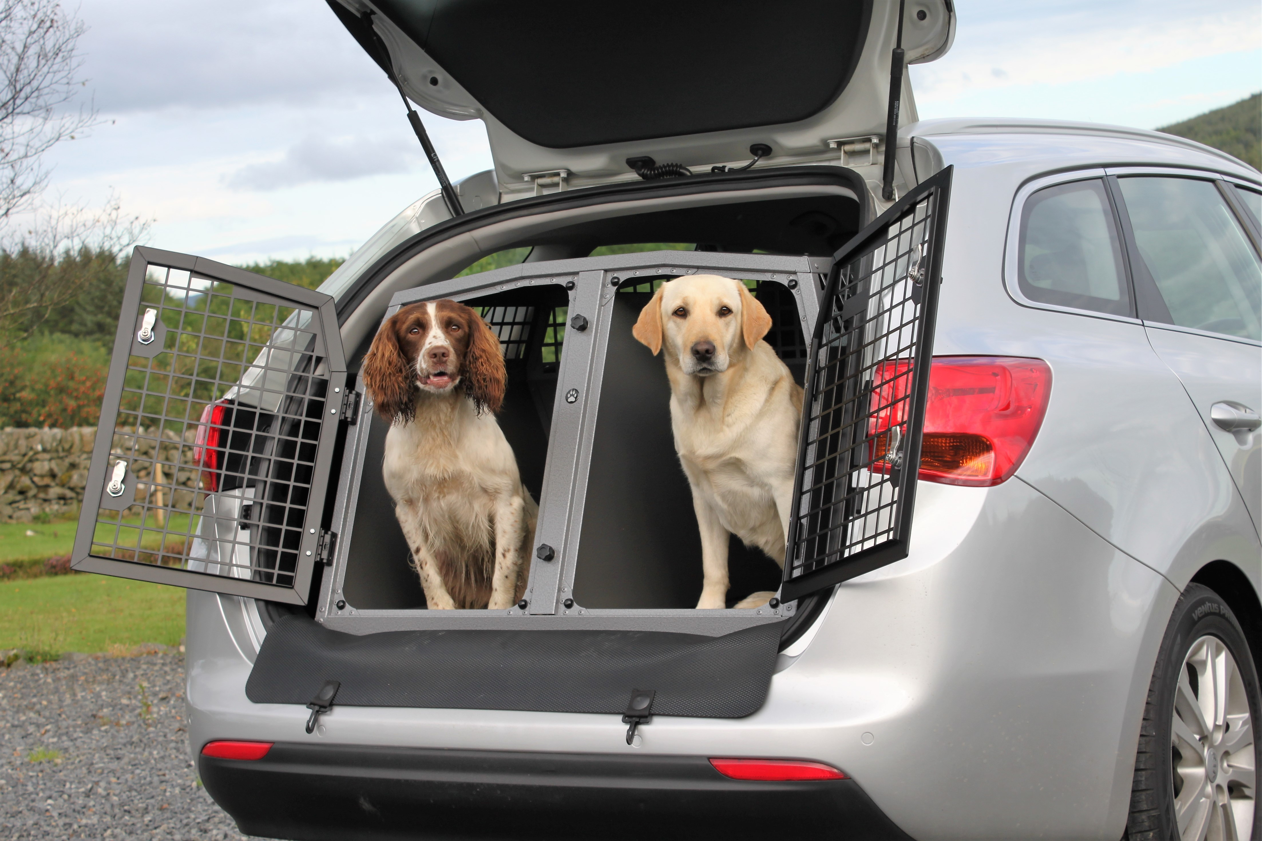 Best Cars For Traveling With Dogs
