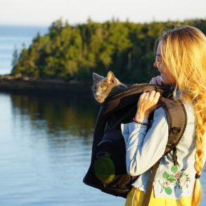 10 Best cat backpacks for 2020: Have your Kitty Travel in Style