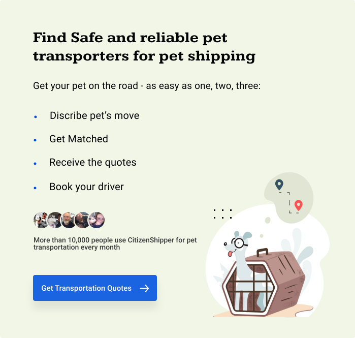 Find Safe and reliable pet transporters for pet shipping