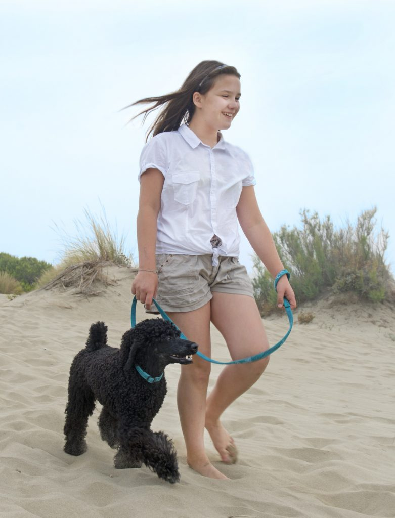 young teen walking with his poodle in the beach