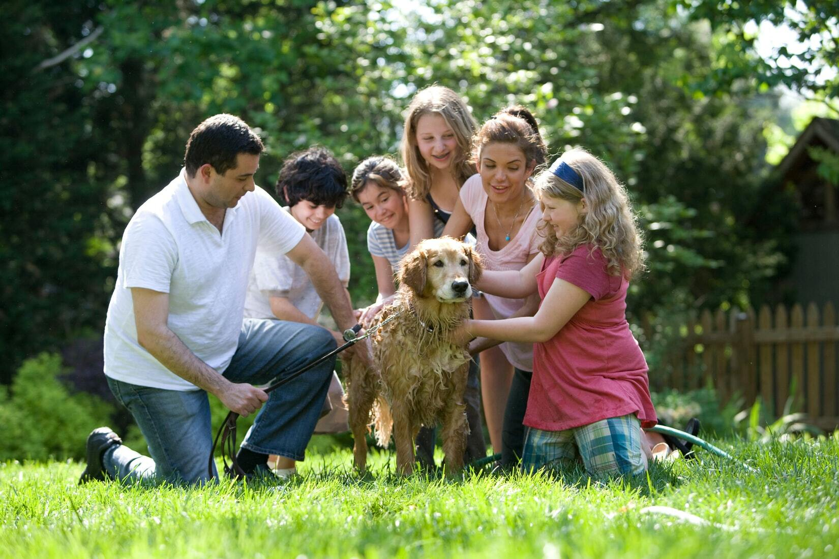 A family with 3 kids taking a good care of their dog