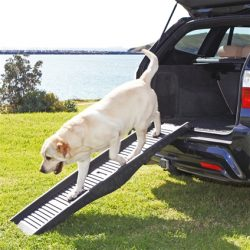 dog vehicle ramp