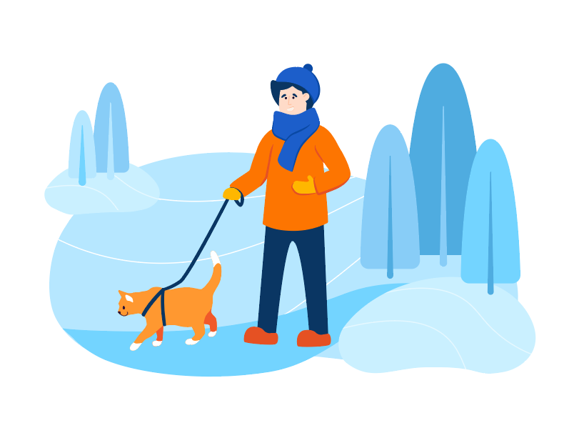 winter weather travel pet safety tips